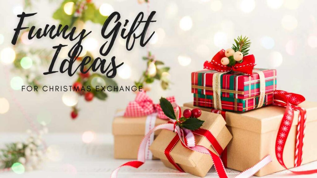 Funny Gift Ideas For Christmas Exchange